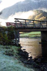 The bridge in autumn