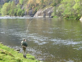 A nice fish on in the lower section just above the fjord